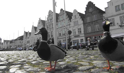 Marktplatz in Friedrichstadt