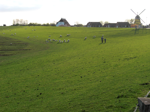Engel-Mühle-Nordstrand