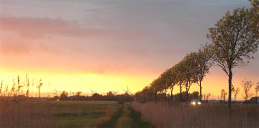 B5-Nordfriesland