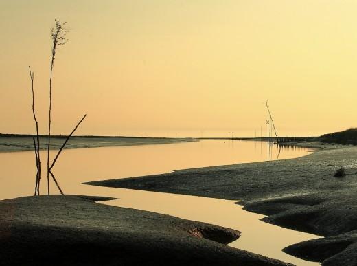 nationalpark-wattenmeer-Nordfriesisches Wattenmeer im Sönke Nissen Koog