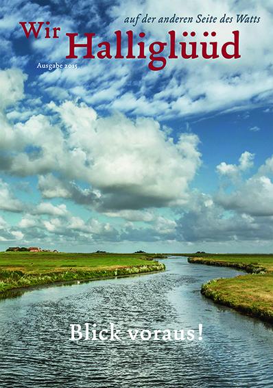 HLM-04-2015-Cover_Halliglüüd